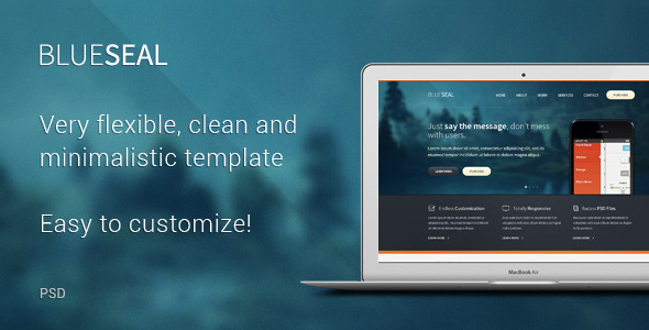 BlueSeal PSD Template