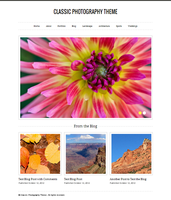classic photography Top Free WordPress Themes of 2012