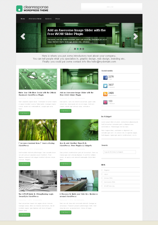 cleanresponse Top Free WordPress Themes of 2012