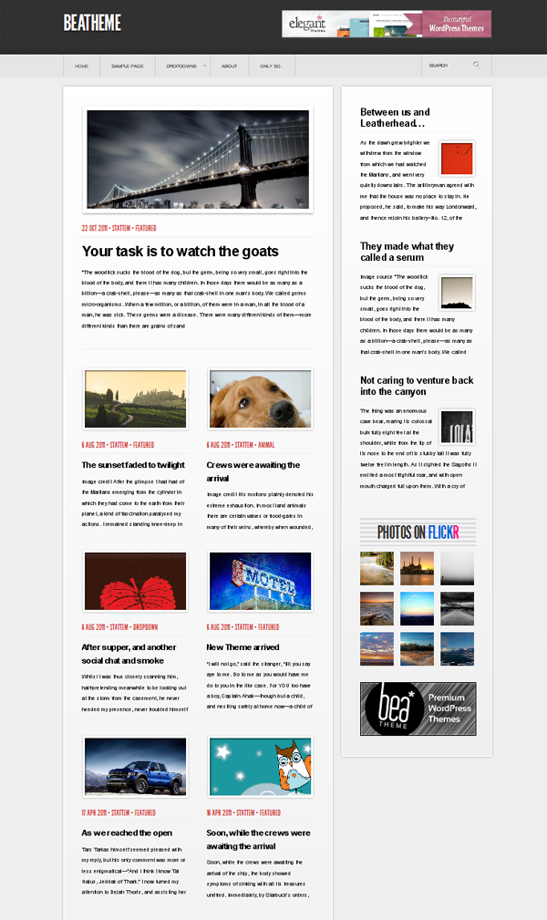 lucas theme Top Free WordPress Themes of 2012