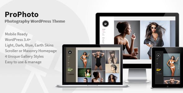 01 main screenshot   large preview1 45 Outstanding Themes for Photographers