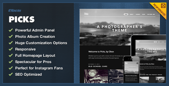 01 picks banner   large preview1 45 Outstanding Themes for Photographers