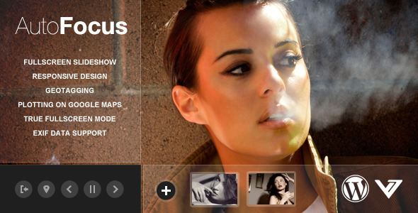 1 preview   large preview1 45 Outstanding Themes for Photographers