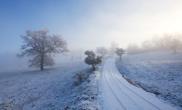 21131 30 Refreshing and Beautiful Winter Photographs