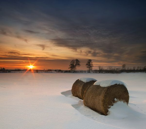 Winter Sunset by Pawel Uchorczak