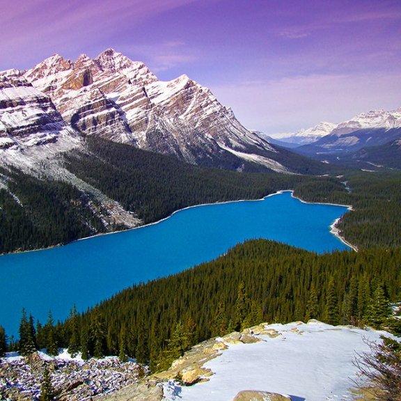 Peyto Lake @ Alberta, Canada