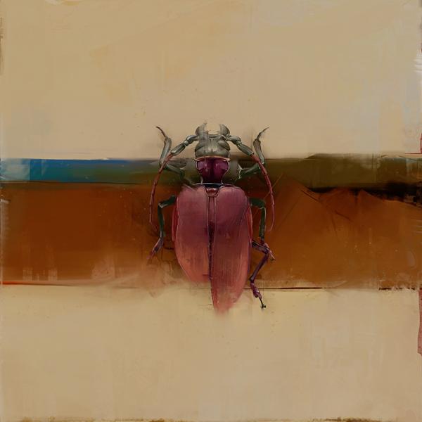 Beetles (2)
