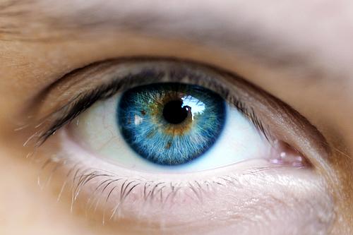 see-eye-to-eye[1]
