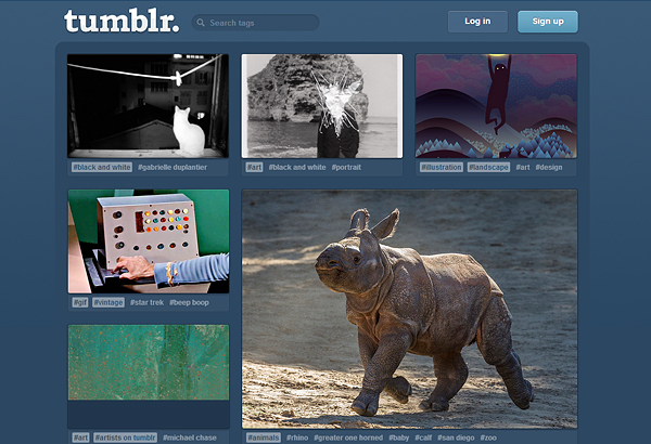tumblr1 5 Reasons You Might Not Want to Use Wordpress