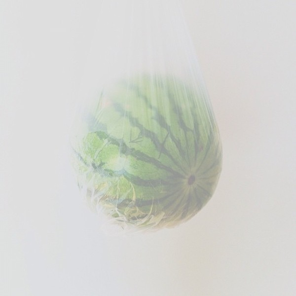 watermelon in bag Conceptual iPhone Photography from Brock Davis