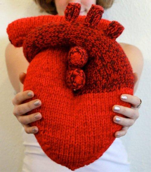 Anatomical Heart Pillow