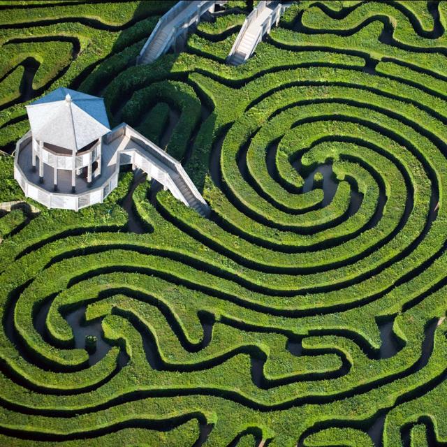 Longleat Hedge Maze @ Wiltshire, England