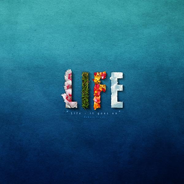 link-12-Life_by_mushir