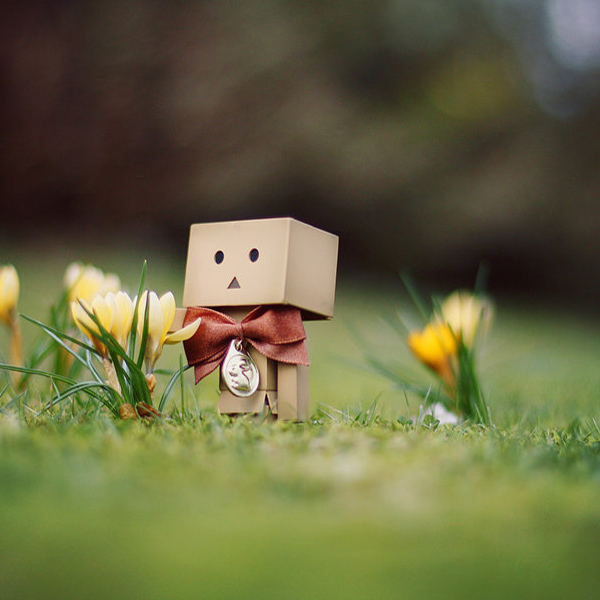 link 8 danbo march wallpaper  by gloeckchen 20 High Definition Spring Wallpapers
