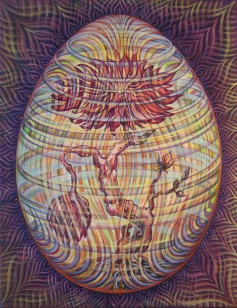 subtle succession web1 Visionary and Interdimensional Art by Amanda Sage