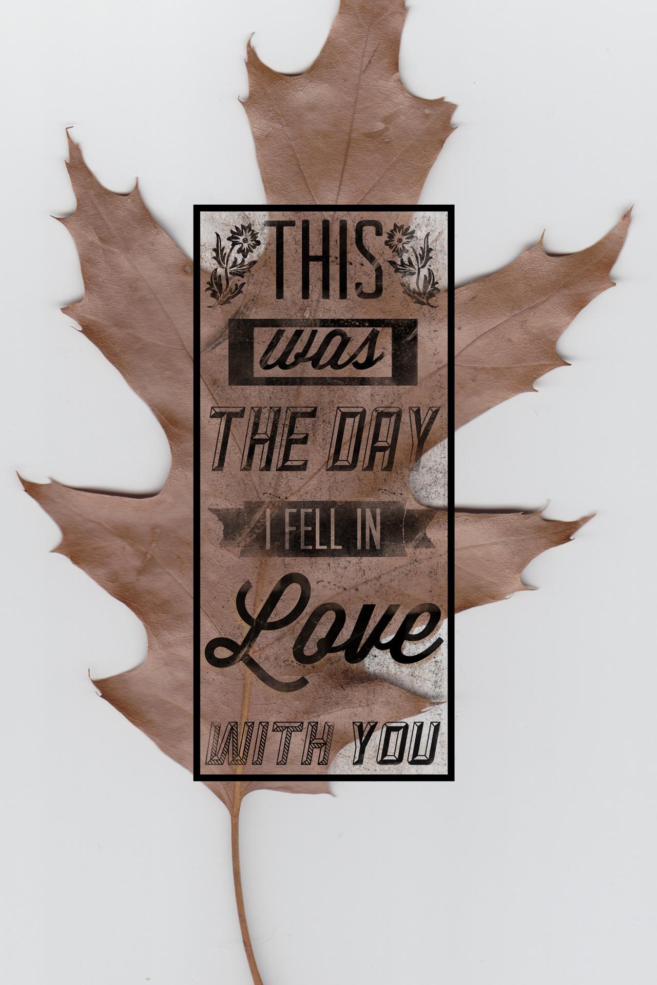 """""""Leaf""""  by Austin Woodard"""
