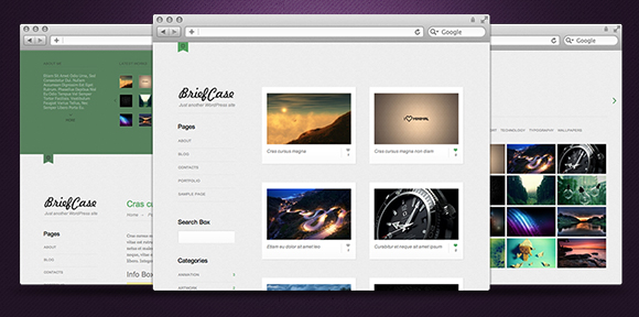briefcase Giveaway: 3 Wordpress Themes (Developers License) from Rockable Themes