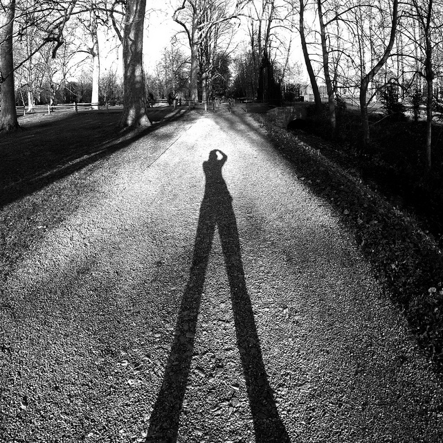 Shadow by Matt Bilton