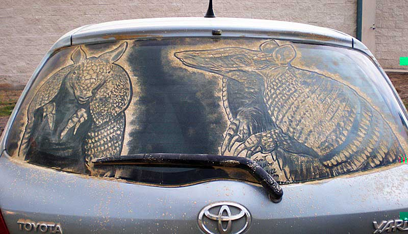 armadillos1 20 Dirty Car Artworks by Scott Wade