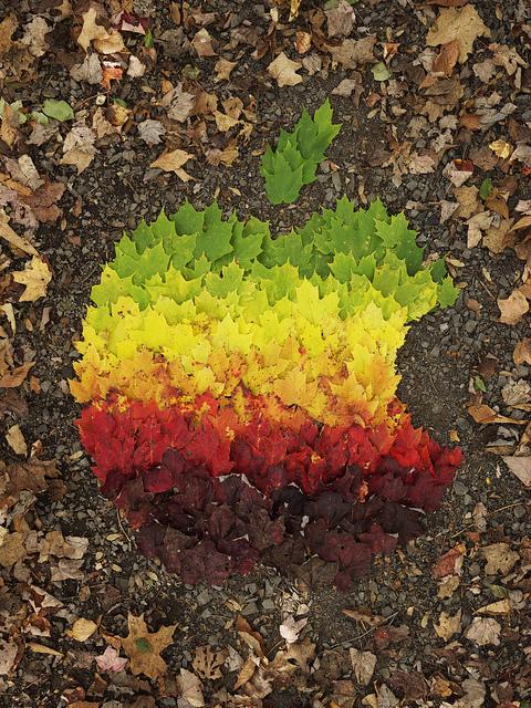 autumn-spectrum