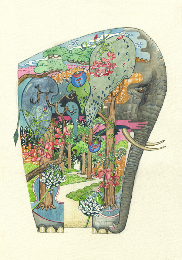 elepahnt print Psychotropic Watercolor Illustrations by Daniel Mackie