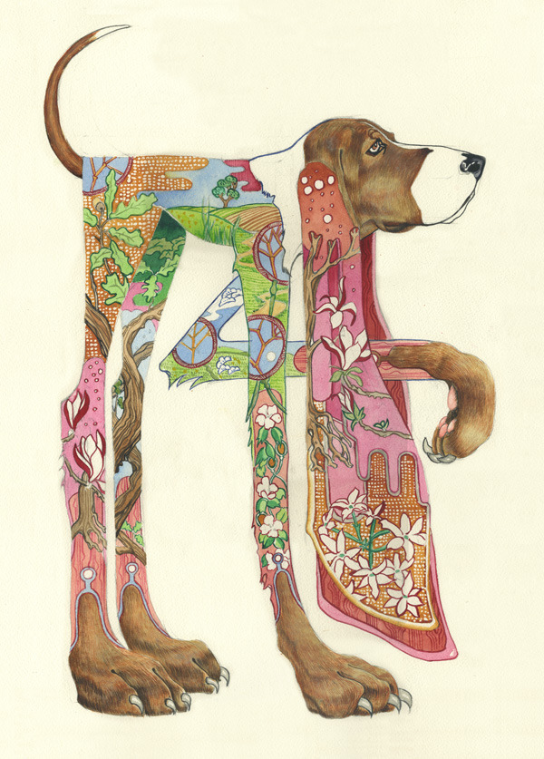 houndcard