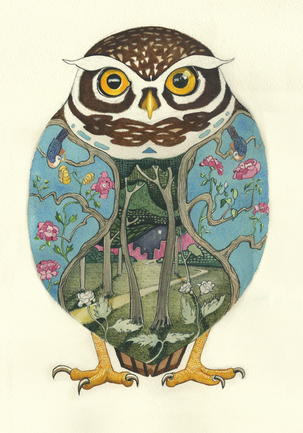 littleowl Psychotropic Watercolor Illustrations by Daniel Mackie