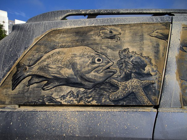 ocean aquarium art splash in carlsbad ca 20 Dirty Car Artworks by Scott Wade