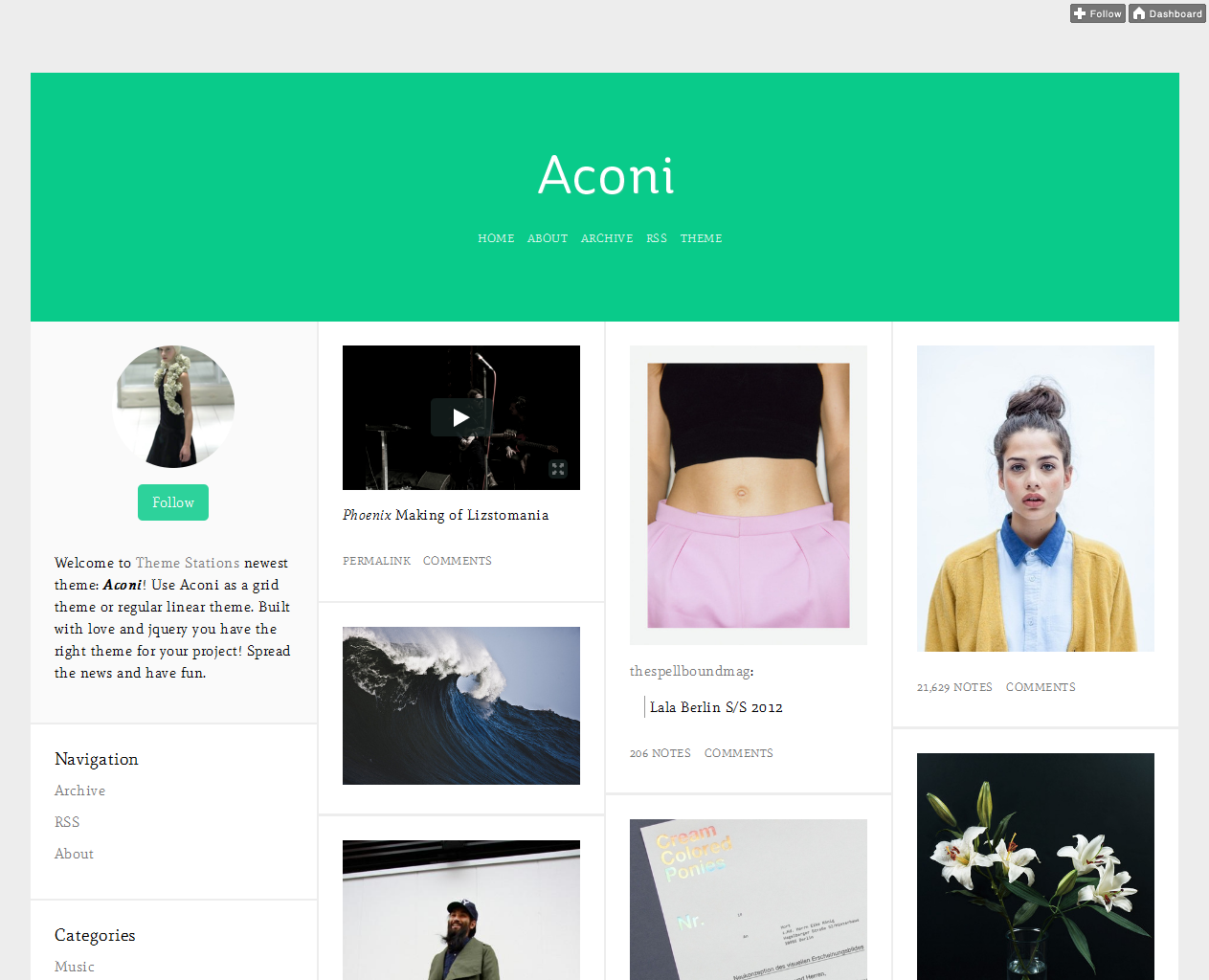 t aconi1 45 Free Grid Based Tumblr Themes