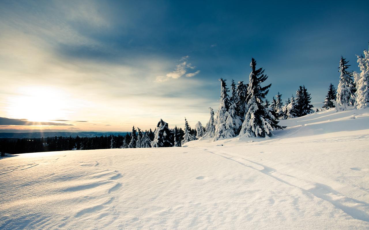 Winter Sun By jhkv