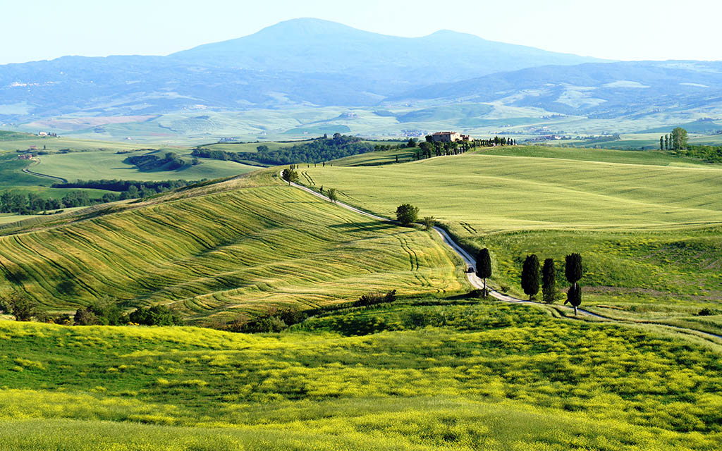 Terrapille - Tuscany By Panderz06380