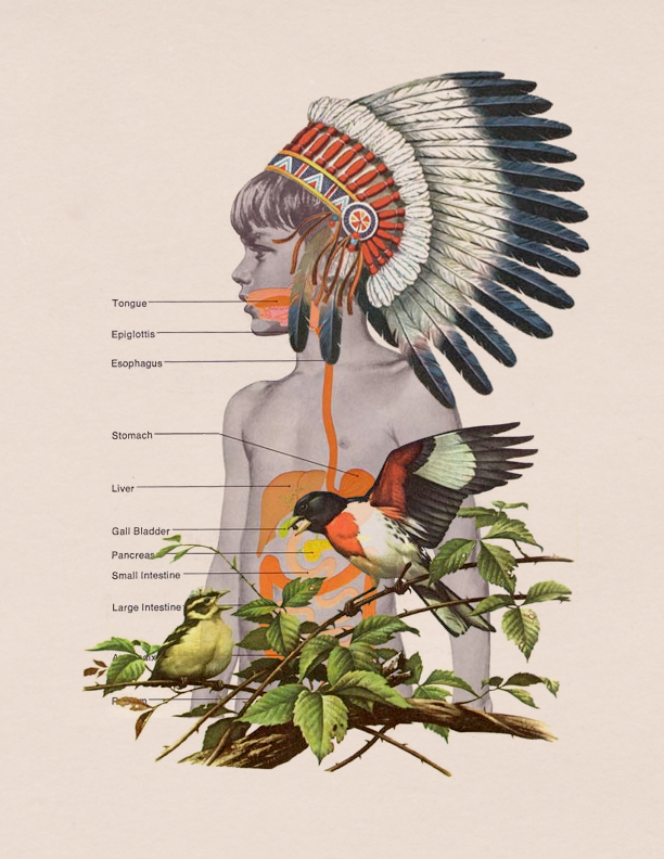 Chromatic Illustrations by Arian Behzadi (2)