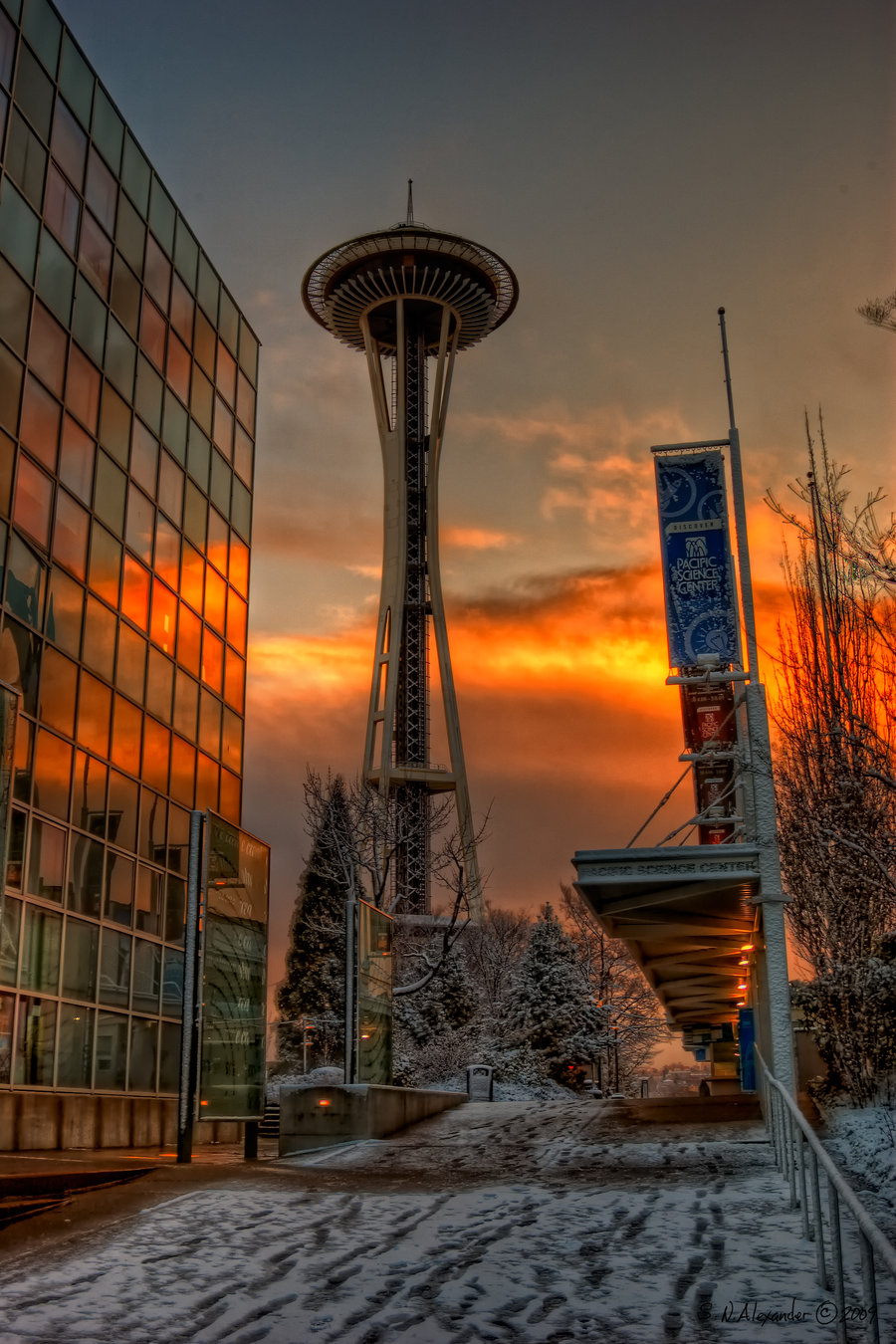 Glow on the Needle HDR by Shelly Alexander