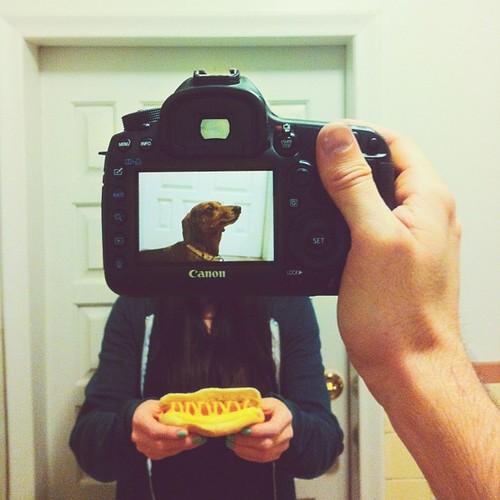 Petheadz by Zack Rose (14)