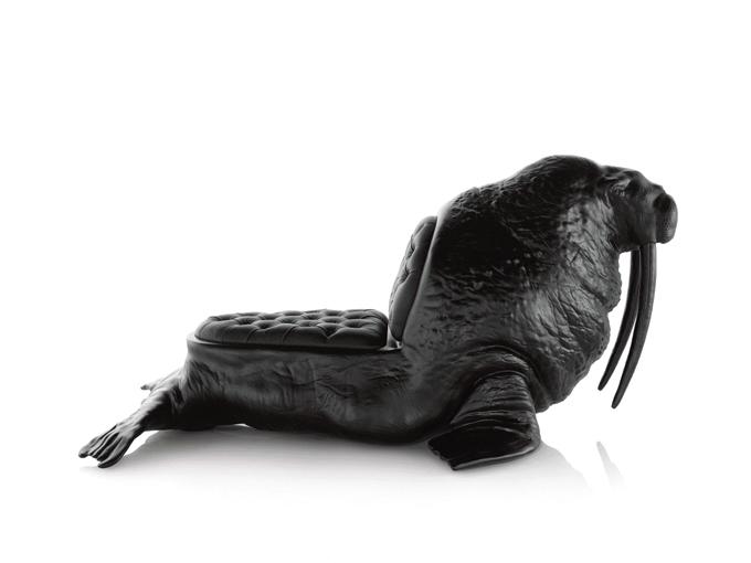 Walrus (1)