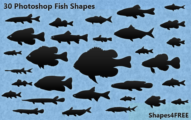 30 fish shapes lg1 2500+ Free Custom Photoshop Shapes