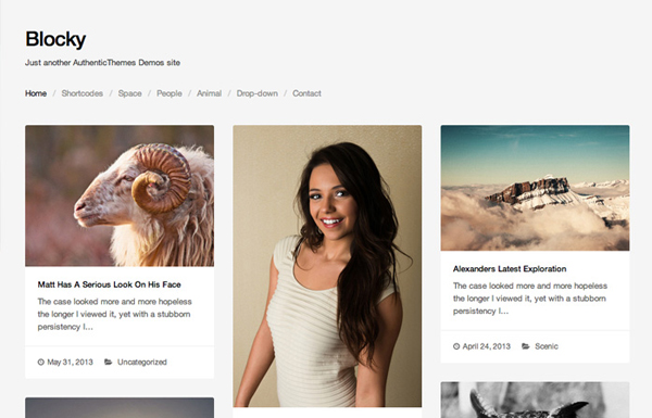 blocky 20 Minimal Wordpress Themes by Authentic Themes