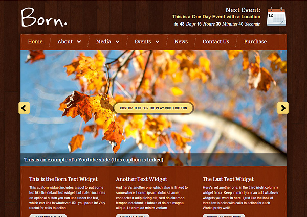 born 20 Excellent Wordpress Themes for Churches