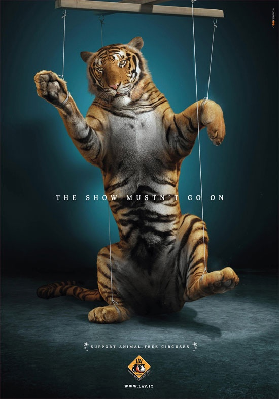 Support Animal Free Circuses