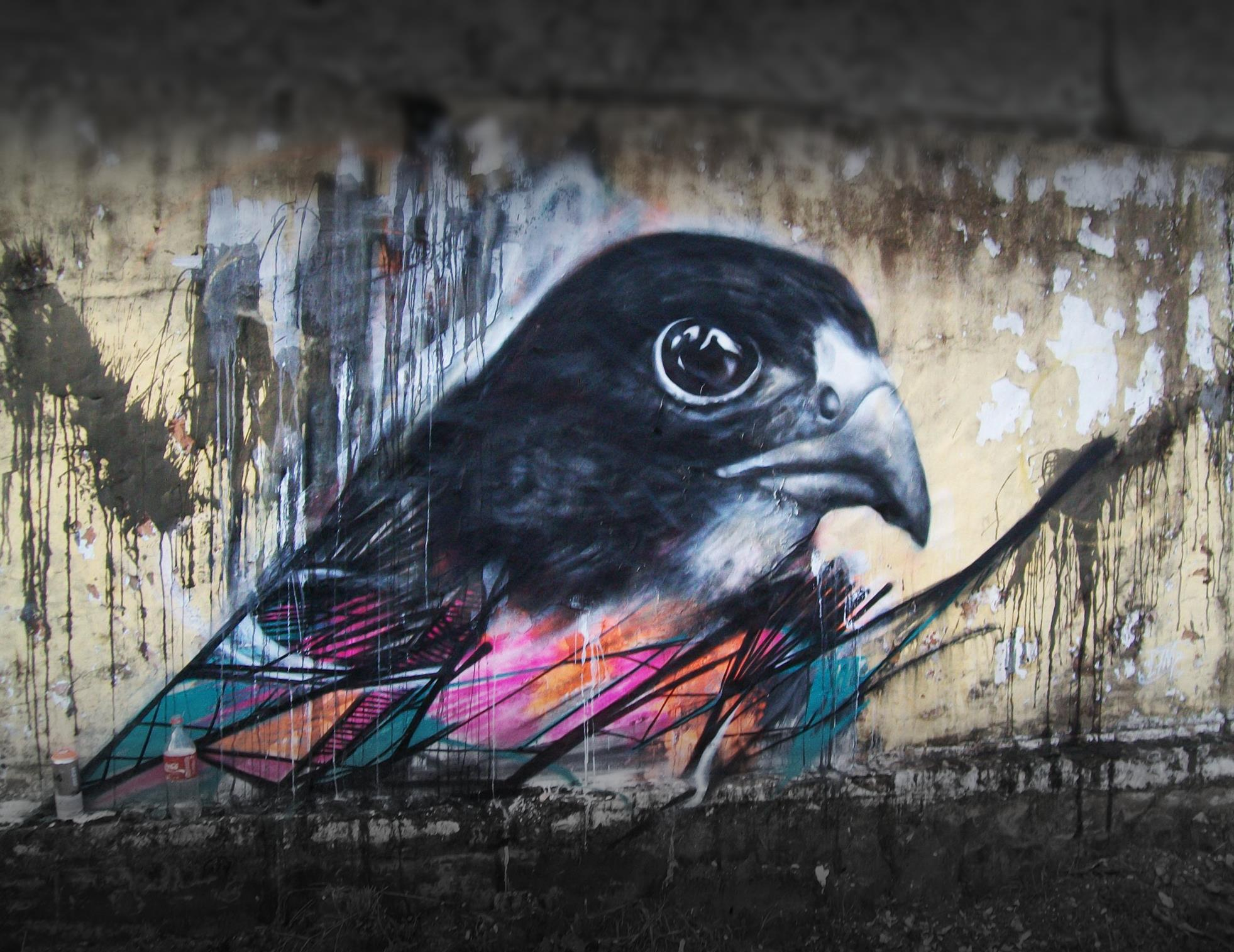 graffiti birds by brazilian artist l7m 1 Graffiti Birds by Brazilian Artist L7M