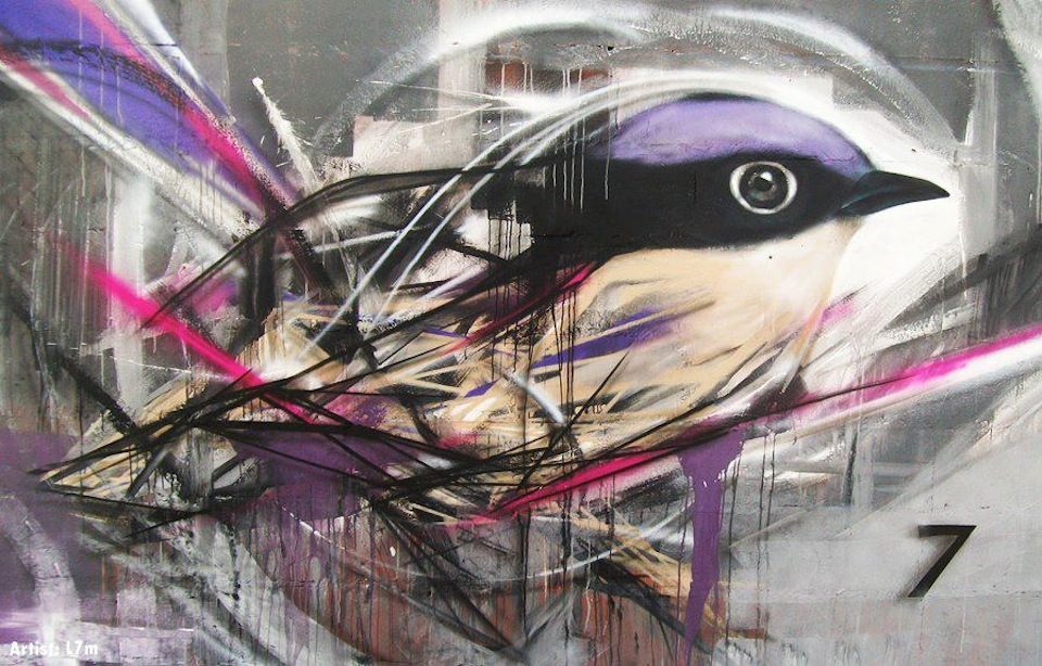 graffiti birds by brazilian artist l7m 12 Graffiti Birds by Brazilian Artist L7M