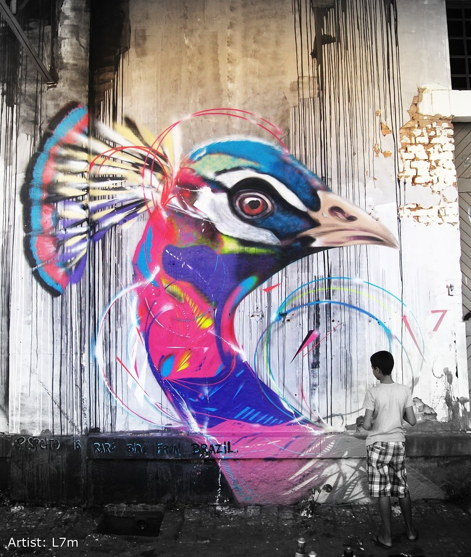 graffiti birds by brazilian artist l7m 2 Graffiti Birds by Brazilian Artist L7M