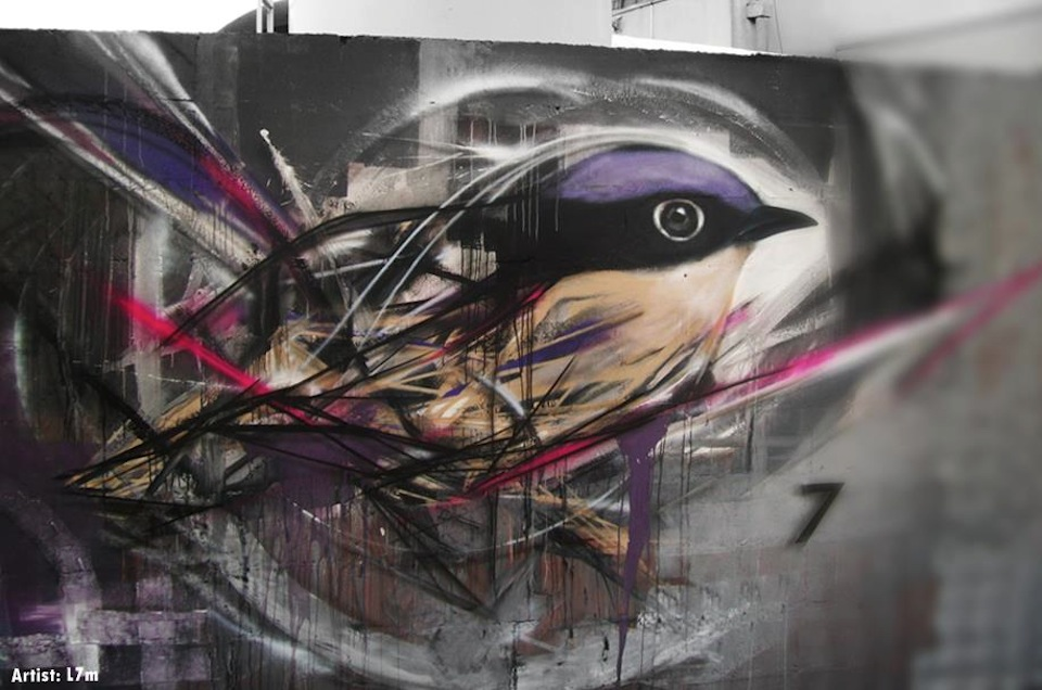 graffiti birds by brazilian artist l7m 3 Graffiti Birds by Brazilian Artist L7M