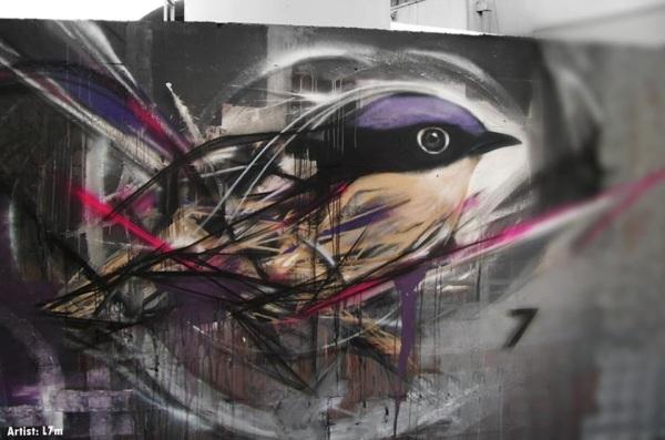 Graffiti Birds by Brazilian Artist L7M (3)