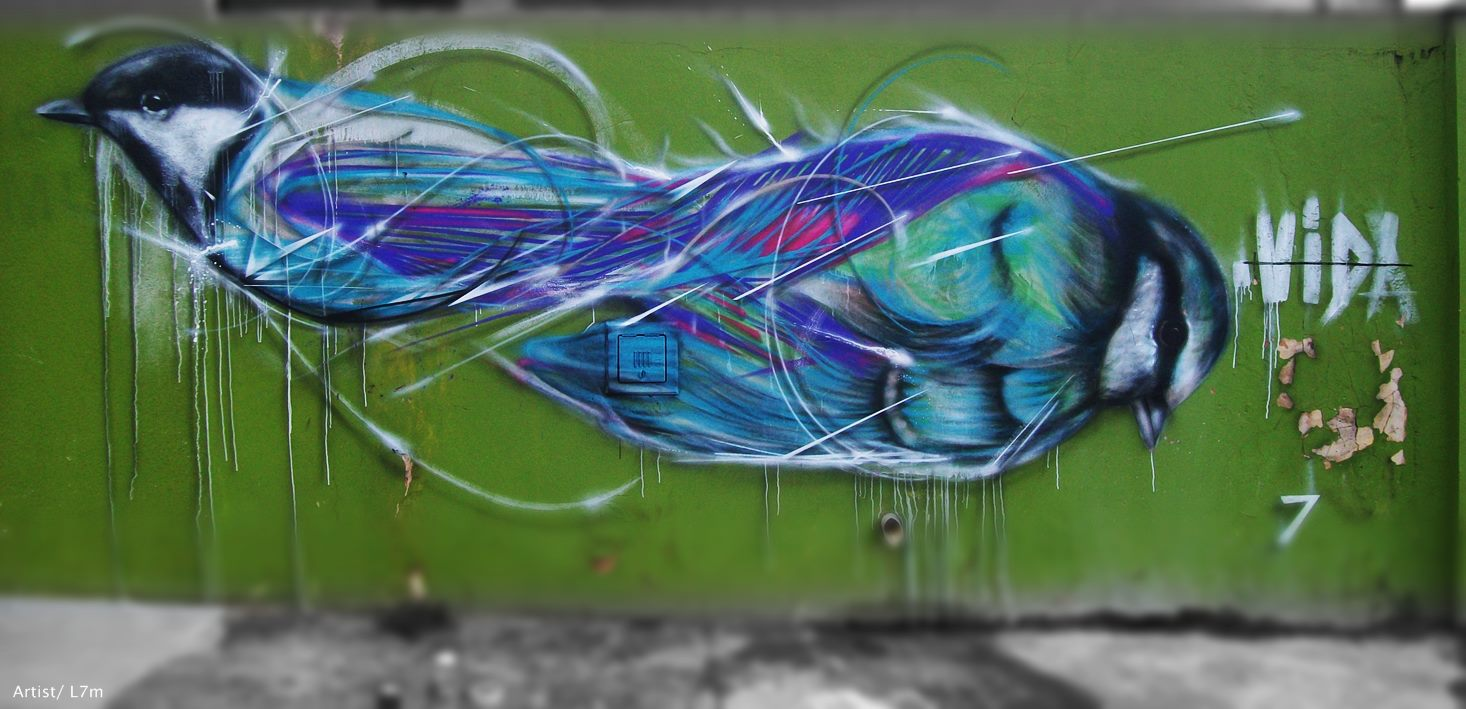 graffiti birds by brazilian artist l7m 4 Graffiti Birds by Brazilian Artist L7M