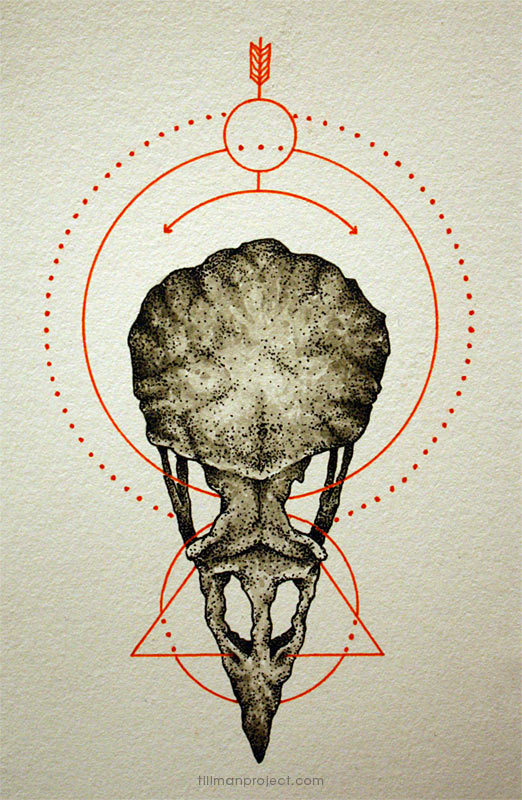 Pen and Watercolor Illustrations by Clint Reid (16)