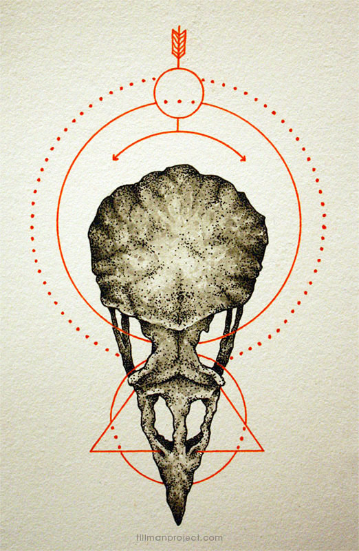 Pen and Watercolor Illustrations by Clint Reid (25)
