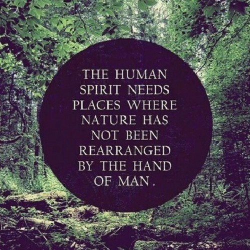 Philosophical Quotes About Life (9)