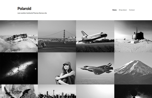 polaroid 20 Minimal Wordpress Themes by Authentic Themes