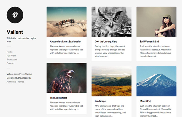 valient 20 Minimal Wordpress Themes by Authentic Themes